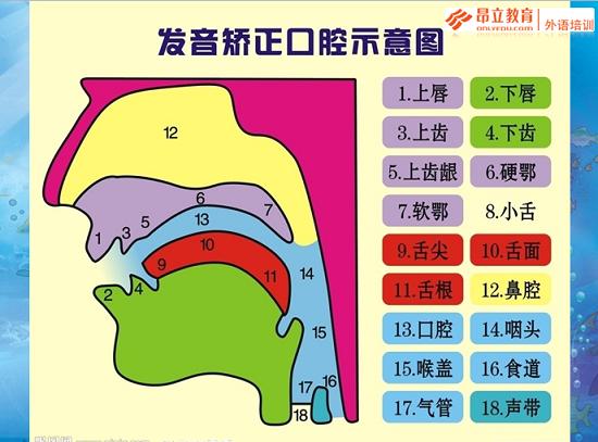 英语名词知识结构图